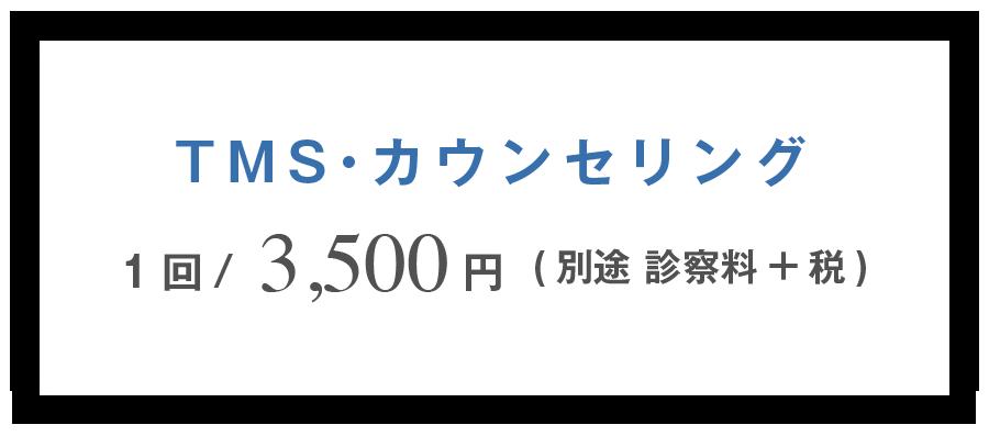 TMS•カウンセリング 1回3,500円 (別途 診察料+税)